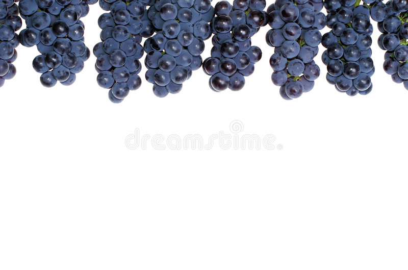Donkere druif royalty-vrije stock afbeelding