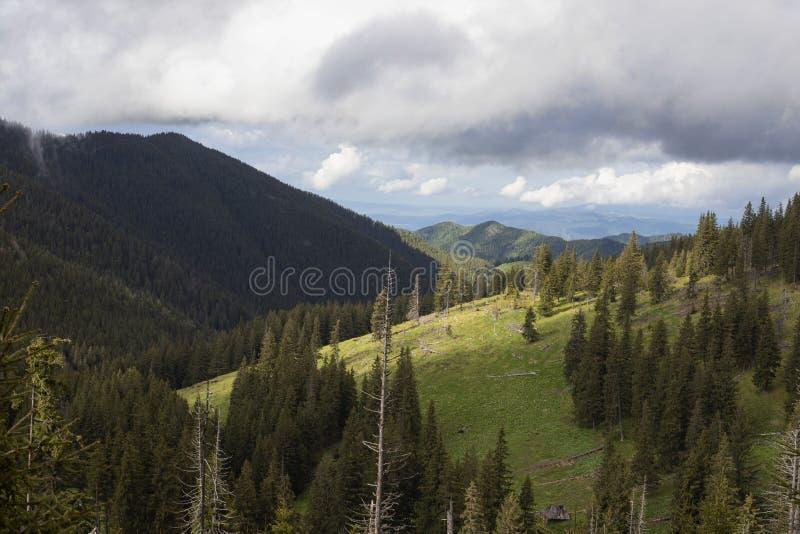 Donkere en witte wolken over de bovenkant van bergen, verbazend landschap met mistig bomenbos stock fotografie