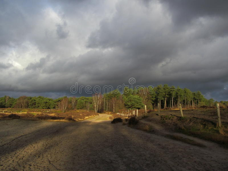 Donkere hemel boven Lage Vuursche royalty-vrije stock foto's