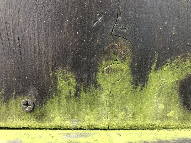 Donkere houten en groene vormachtergrond 01 stock foto's