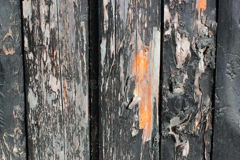 Donkere houten raad, planken Natuurlijk oud houten, natuurlijk het borstelen proces De hoogste mening Close-up De voorraadfoto's royalty-vrije stock afbeelding