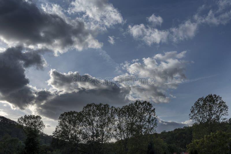 Donkere silhouetten van boomtakken tegen een onweershemel stock foto