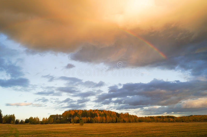 Donkere stormachtige wolken over tarwegebied stock afbeeldingen