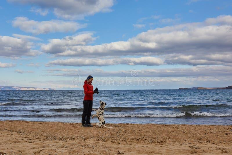 Donkere wolken die zich over meer Baikal verzamelen Een meisje en een hond lopen langs de kust stock fotografie