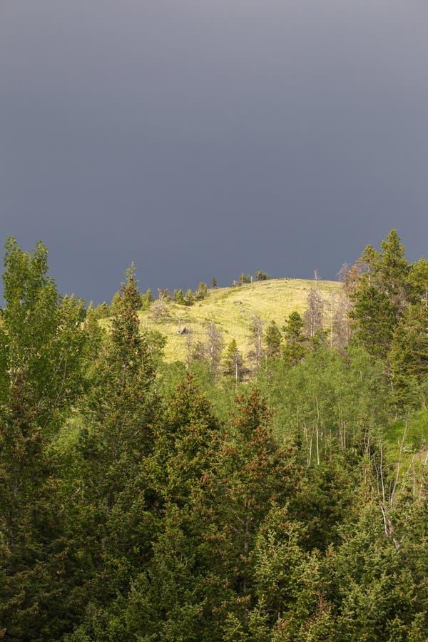 Donkere Wolken over Beboste Berg royalty-vrije stock foto's