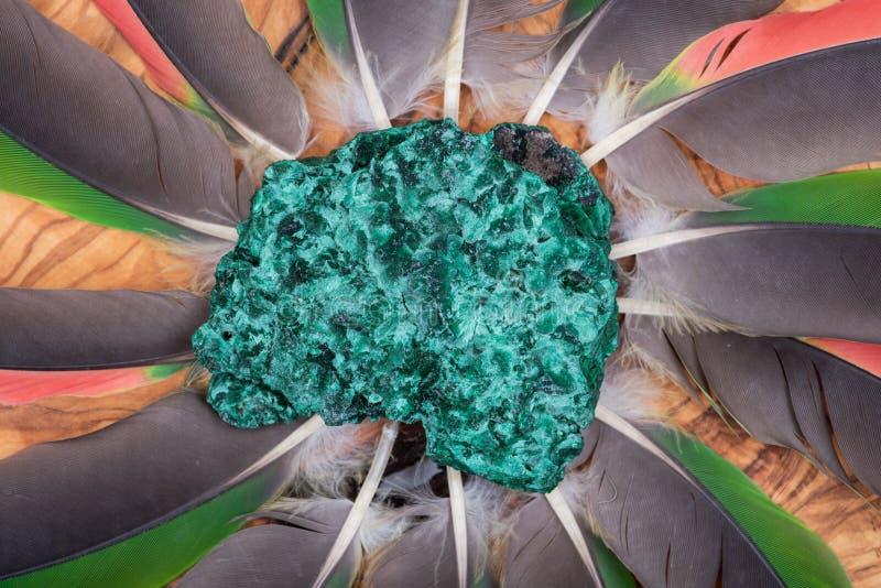 Donkergroene vezelige die Malachietcluster van Shaba-Provincie, Zaïre, in het midden van een cirkel van papegaaiveren wordt gemaa royalty-vrije stock foto's