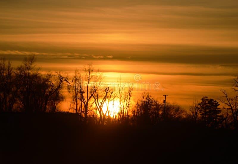 Donkeroranje zonsondergang met bomen stock foto's