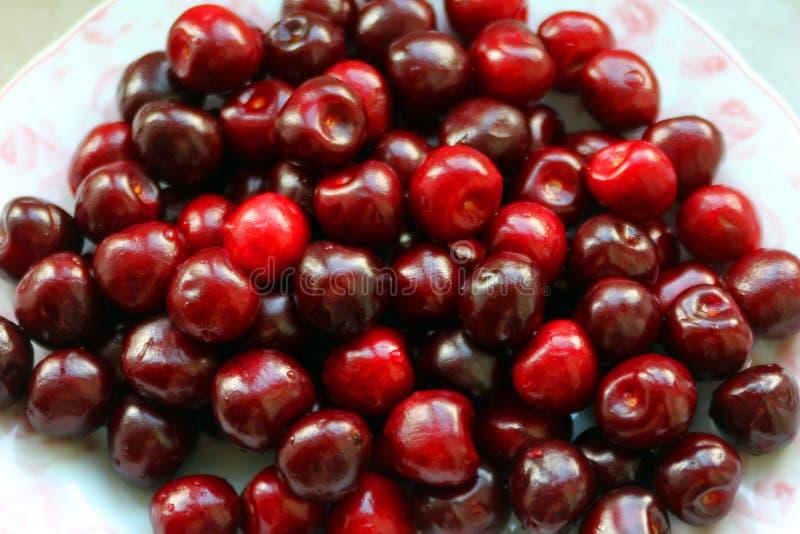 Donkerrode kersen stock afbeelding
