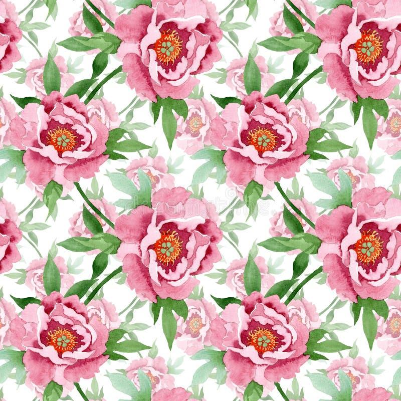 Donkerrode pioen bloemen botanische bloemen Waterverf achtergrondillustratiereeks Naadloos patroon als achtergrond royalty-vrije illustratie
