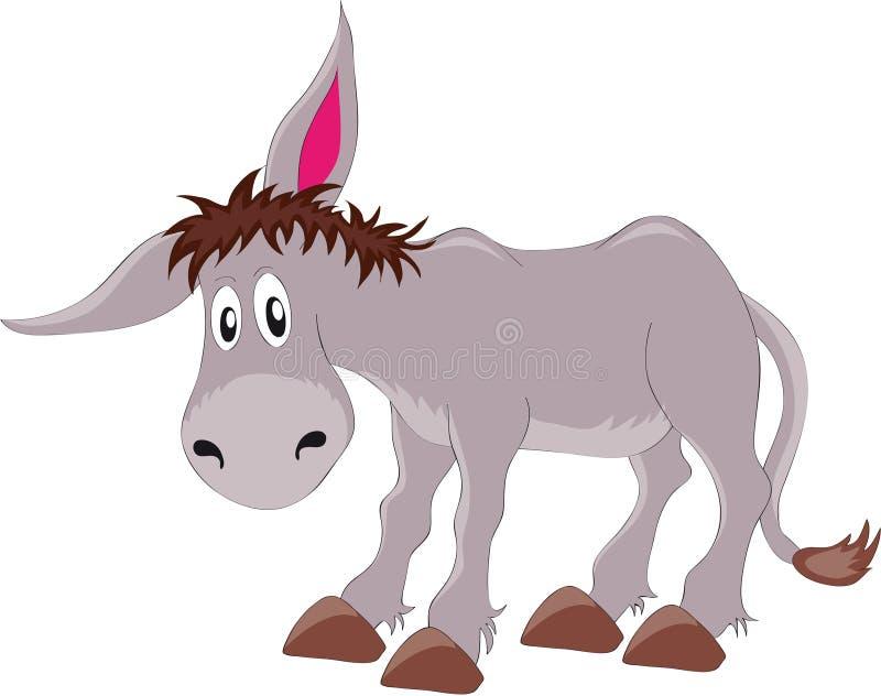 Donkey. Vectors illustration shows a gray donkey
