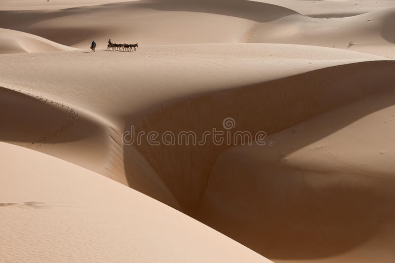 A donkey caravan is tiny on the dunes of the sahara desert, with a large chasm of sand near by. royalty free stock image