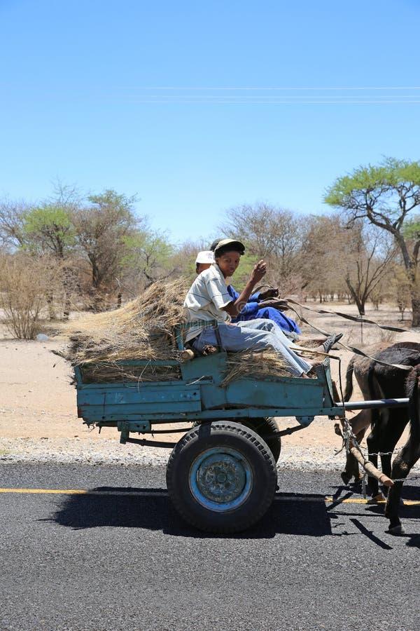 Download Donkey Cart Editorial Stock Image - Image: 35050974