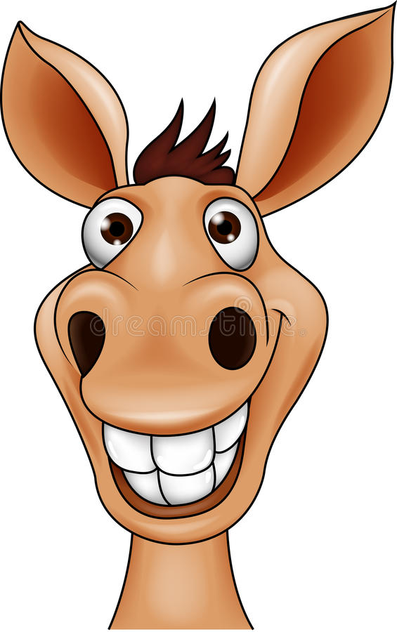 Donkey head vector illustration