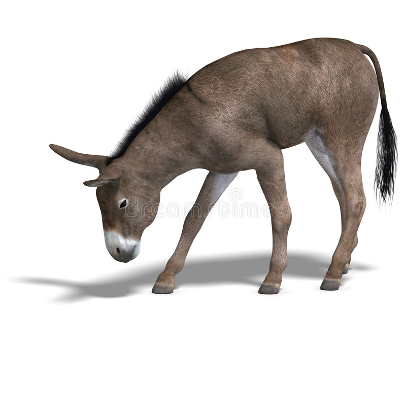 Donkey Render. Rendering of a mule with Clipping Path over white stock illustration