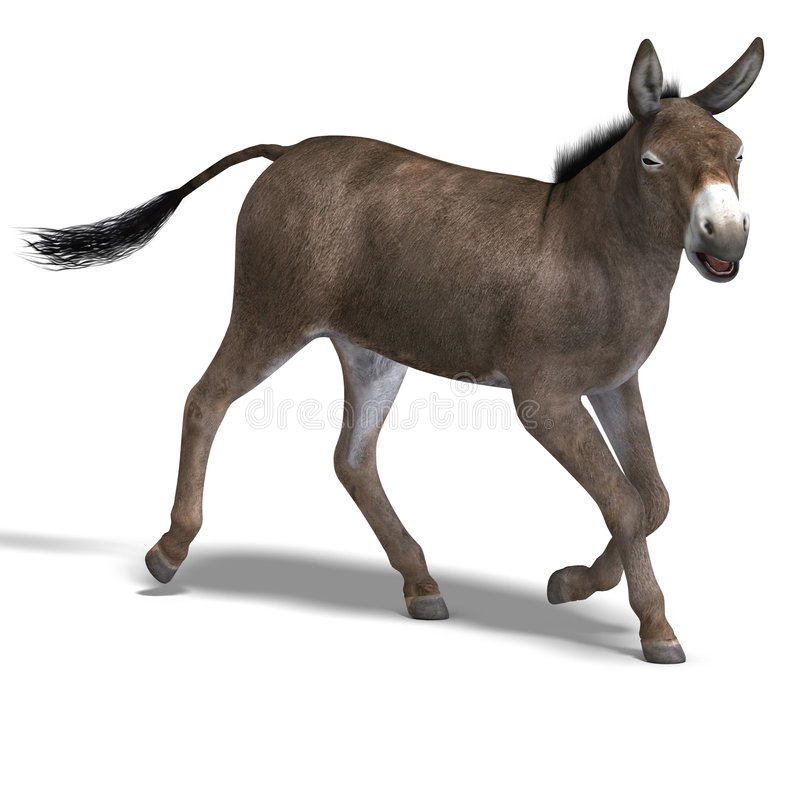 Donkey Render. Rendering of a mule with Clipping Path over white vector illustration