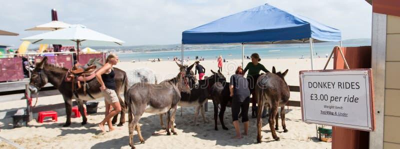 Donkey Rides royalty free stock images