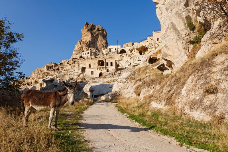 Donkey on the road to old town. Cappadocia, donkey on the road to old town, Turkey royalty free stock photography
