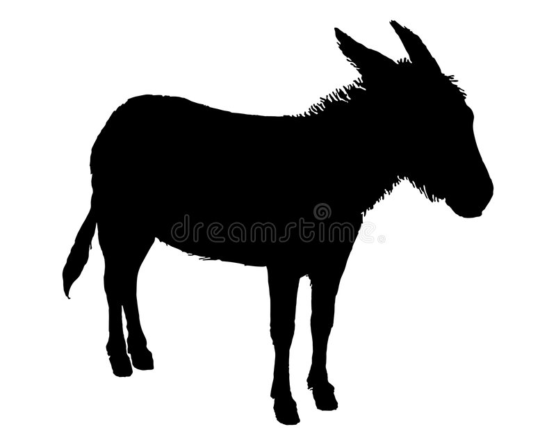 Donkey on white royalty free illustration