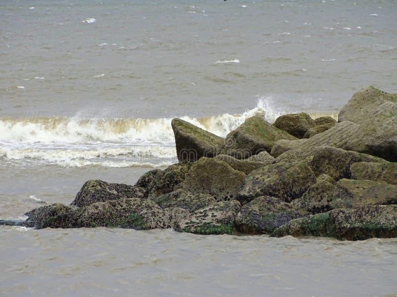 Donmouth lokal naturreserv som är norr royaltyfria foton