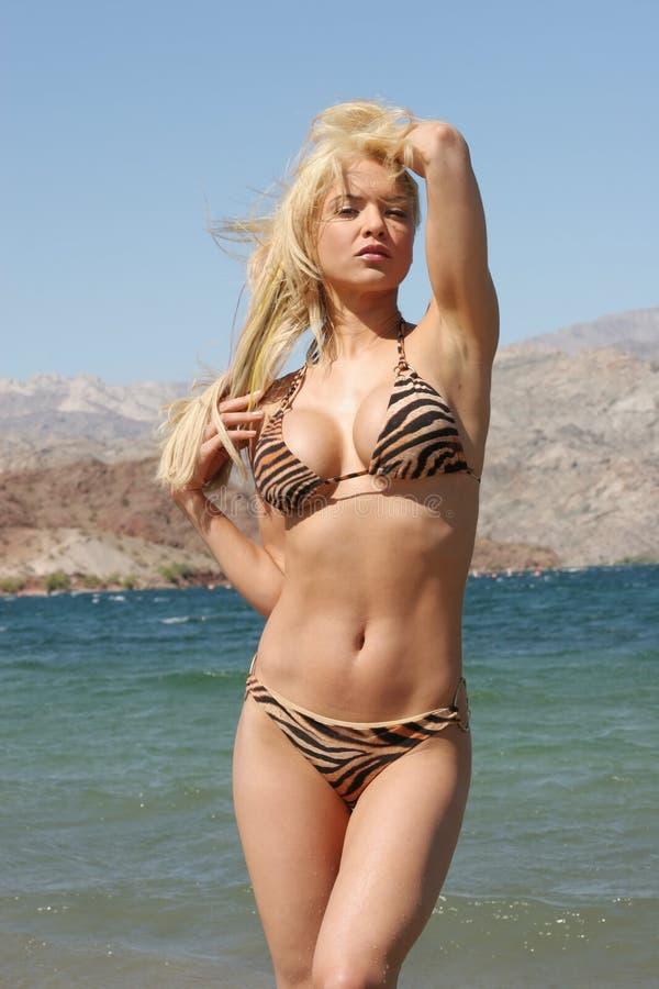 Donna abbastanza sexy immagini stock libere da diritti