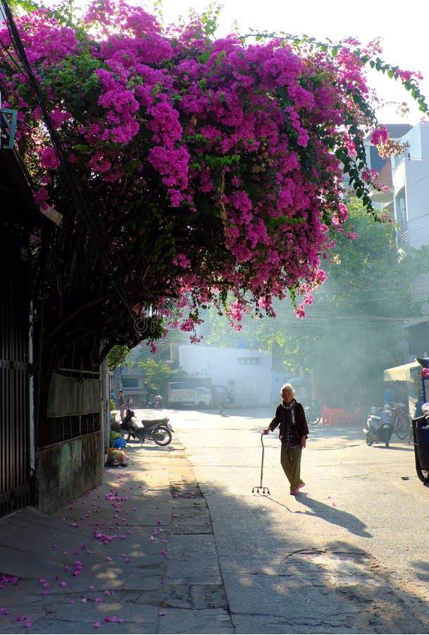 Donna anziana con da bastone da passeggio per attraversare la strada da solo fotografia stock libera da diritti