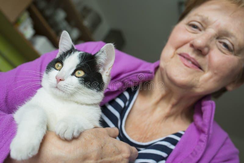Donna anziana con un gatto - terapia animale fotografia stock