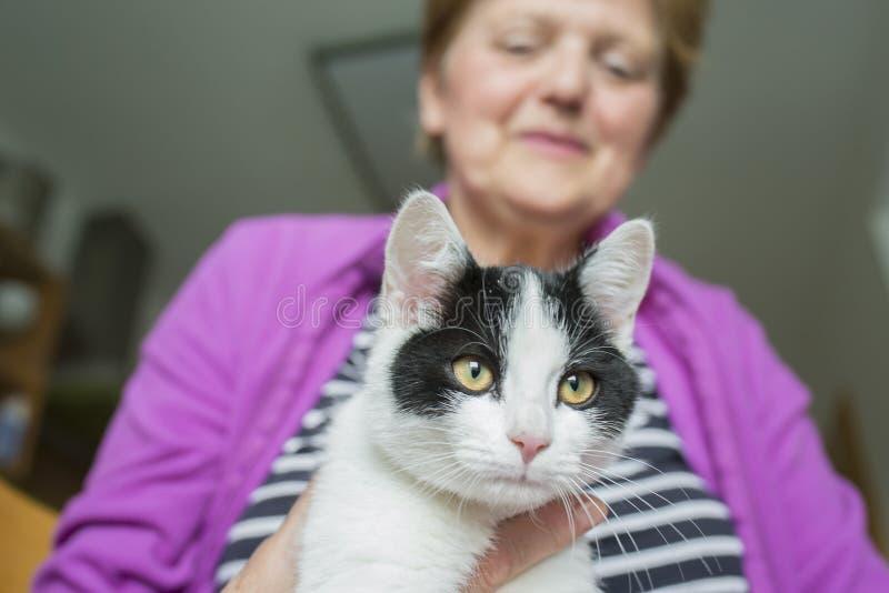 Donna anziana con un gatto - terapia animale immagine stock