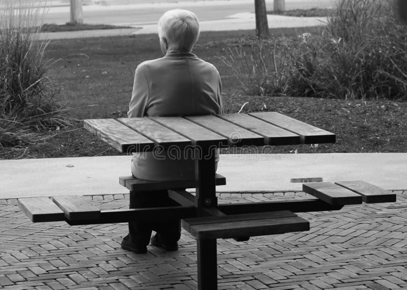 Donna anziana sola sul banco immagini stock