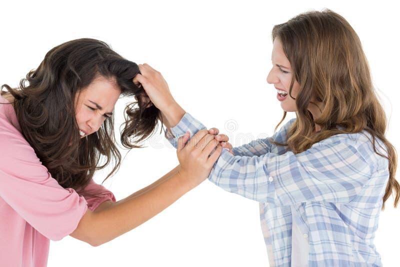 Donna arrabbiata che tira i capelli delle femmine in una lotta immagine stock libera da diritti
