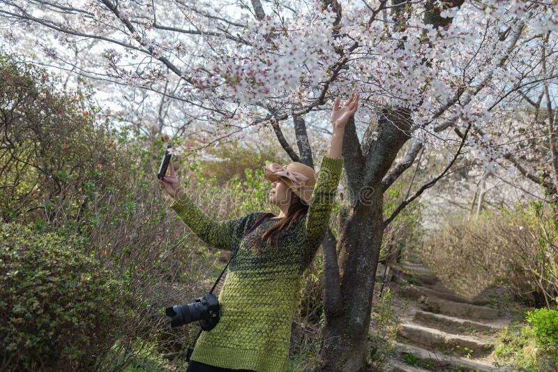 Donna asiatica che prende selfie con i fiori di ciliegia fotografie stock