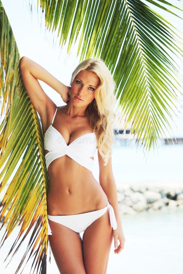 Donna in bikini sotto la palma immagini stock libere da diritti