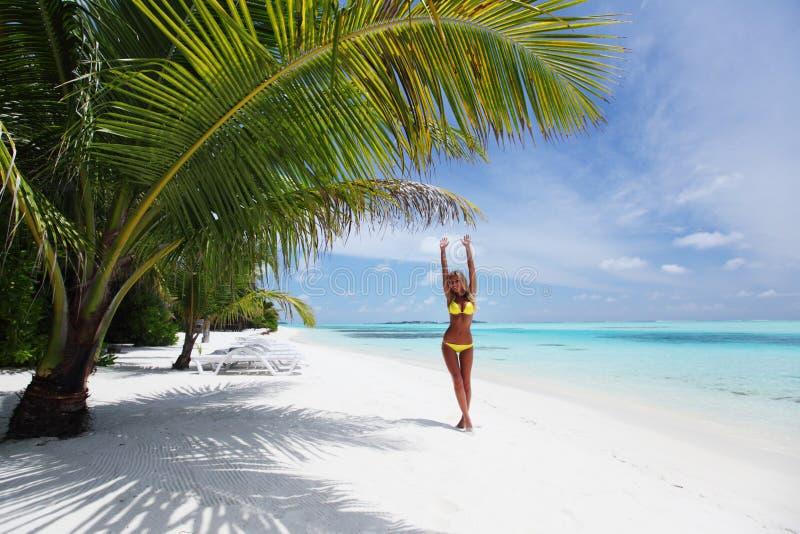 Donna in bikini sotto la palma fotografia stock