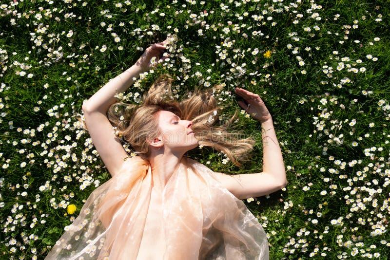Donna bionda che si trova come un fatato nel giardino in un campo delle margherite fotografia stock