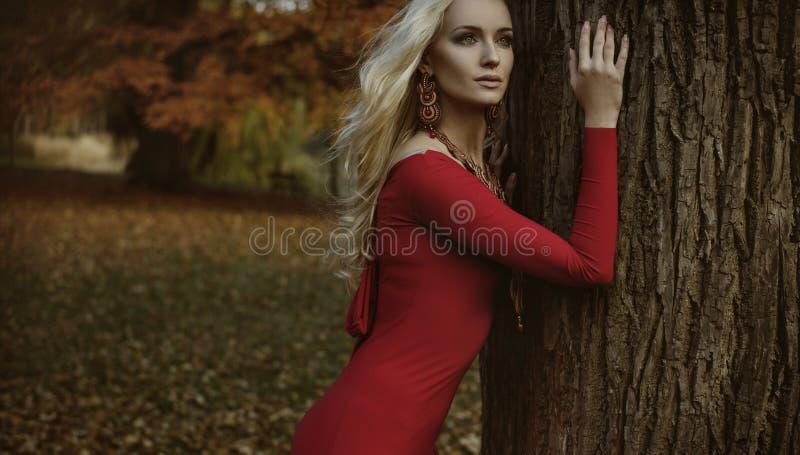 Donna bionda graziosa che posa in un parco autunnale fotografia stock libera da diritti