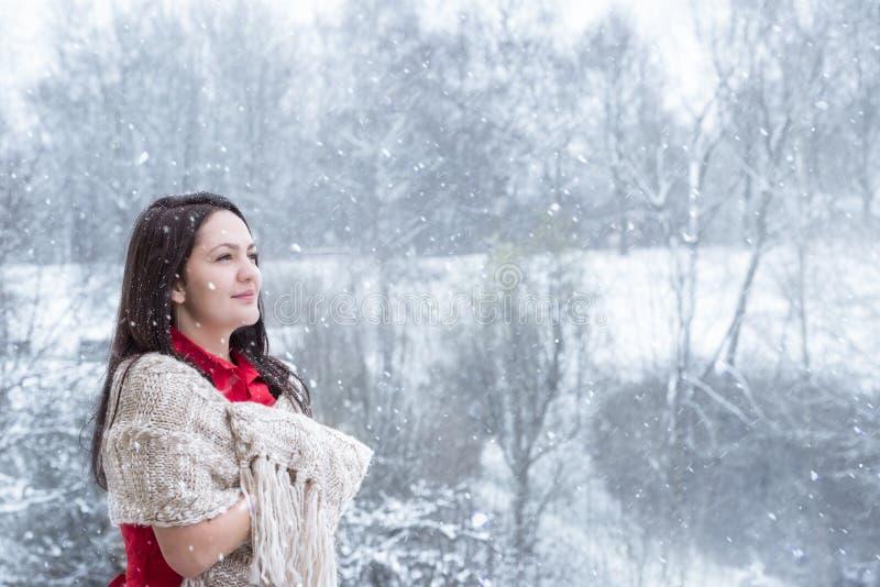 Donna castana nell'ambito delle precipitazioni nevose fotografia stock