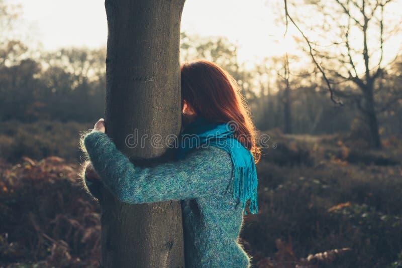 Donna che abbraccia albero al tramonto fotografia stock