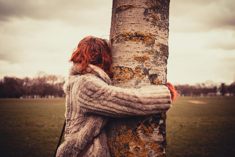 Donna che abbraccia un albero immagine stock