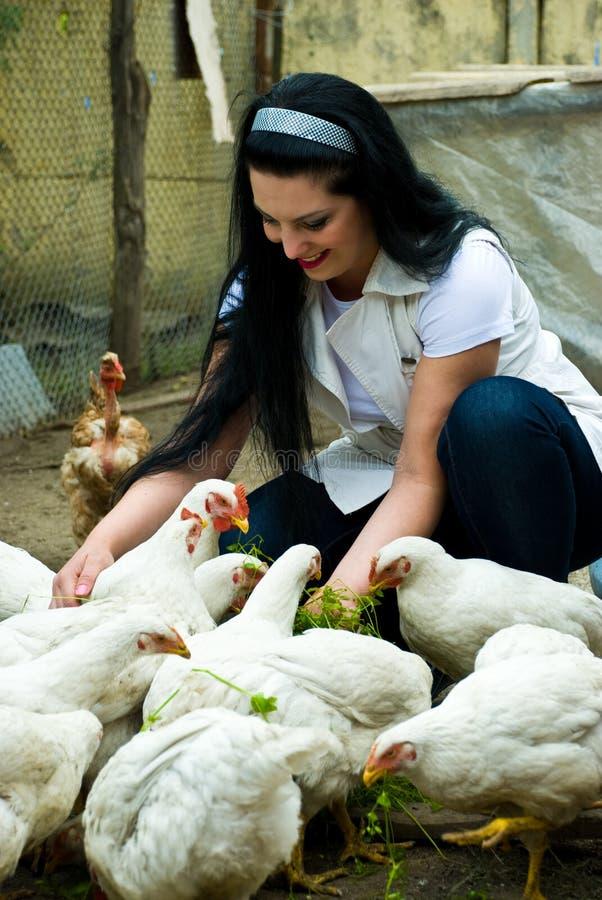 Donna che alimenta la grande azienda agricola di pollo