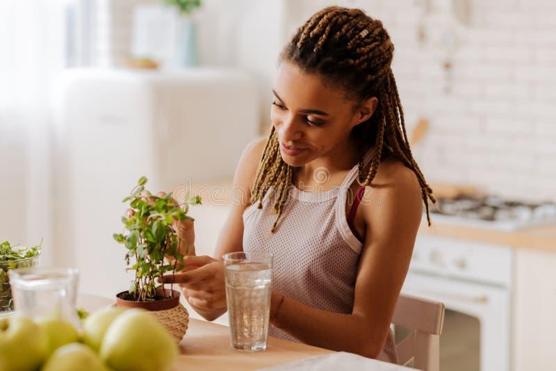 Donna che ama le piante verdi che prendono cura della sua pianta domestica favorita fotografia stock libera da diritti