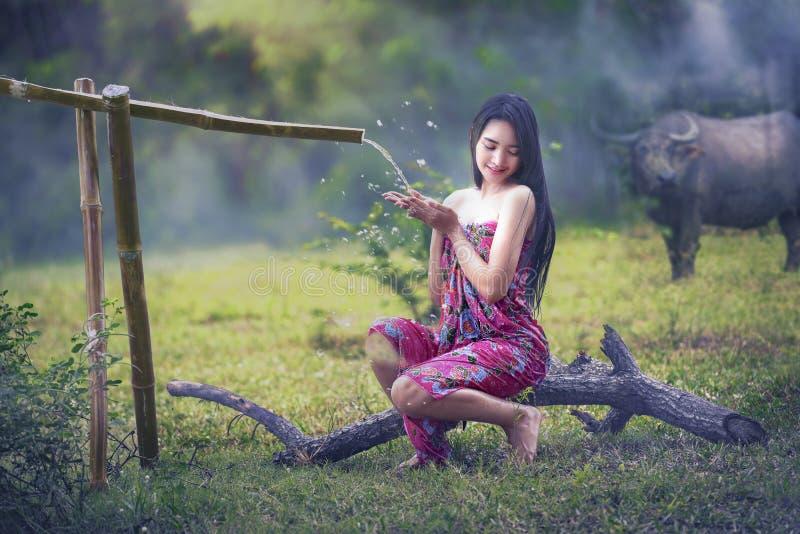 Donna che bagna con il bufalo fotografia stock libera da diritti
