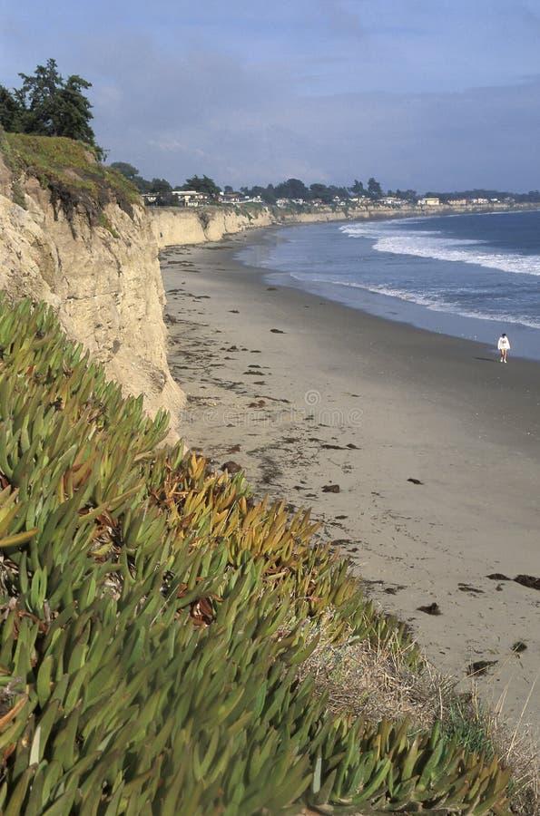 Donna che cammina da solo su una spiaggia fotografia stock libera da diritti