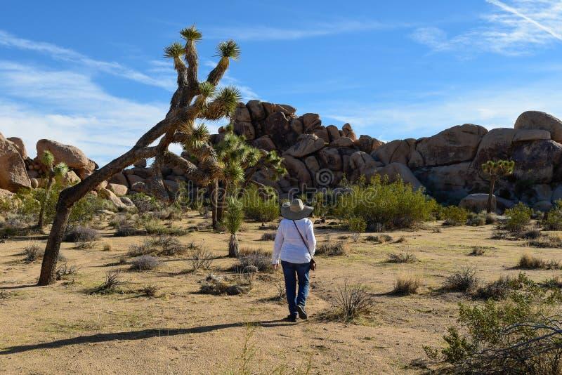 Donna che cammina da solo sulla traccia del deserto immagine stock libera da diritti