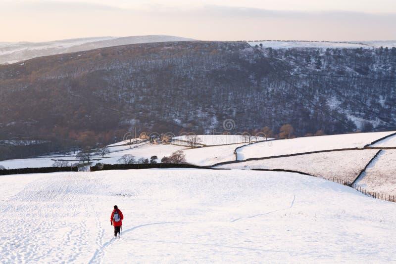 Donna che cammina in inverno fotografia stock