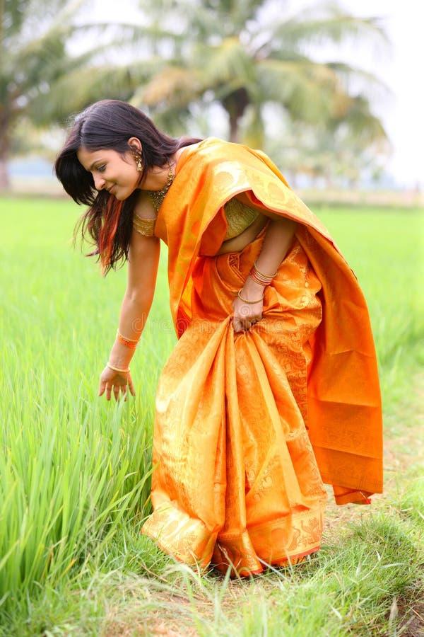 Donna che cammina nel campo di risaia immagini stock