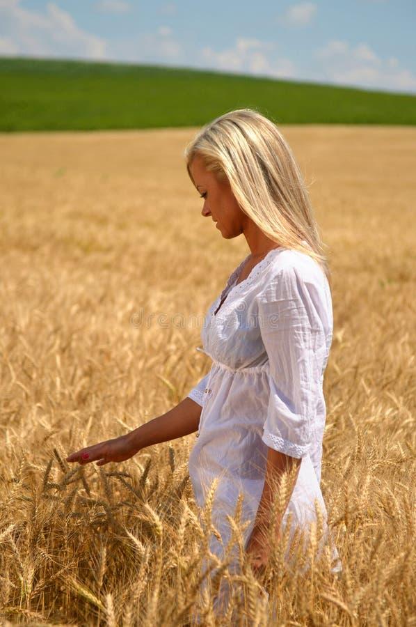 Donna che cammina nel giacimento di grano fotografia stock