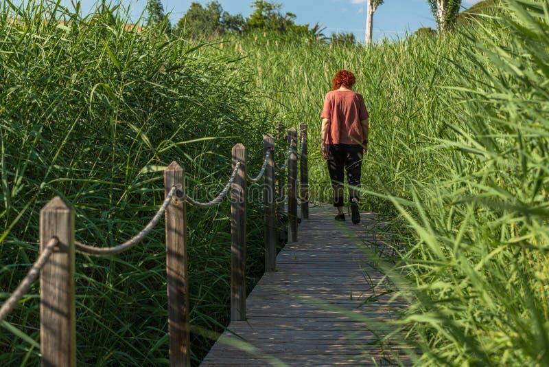Donna che cammina in un giardino fotografia stock