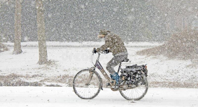 Donna che cicla nella neve immagini stock