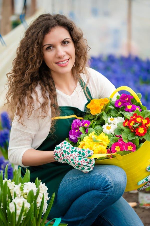 Donna che cura un giardino floreale immagine stock libera da diritti