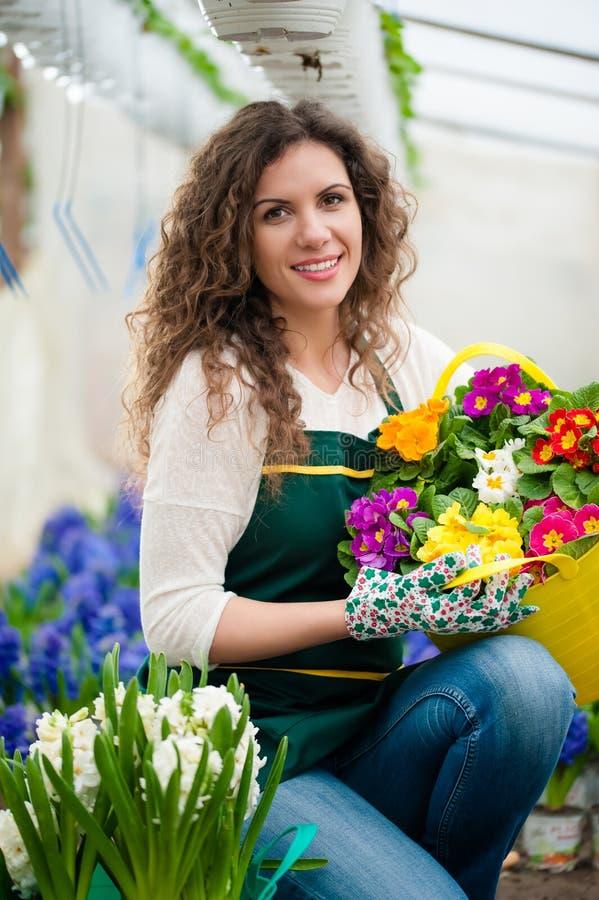Donna che cura un giardino floreale fotografie stock libere da diritti