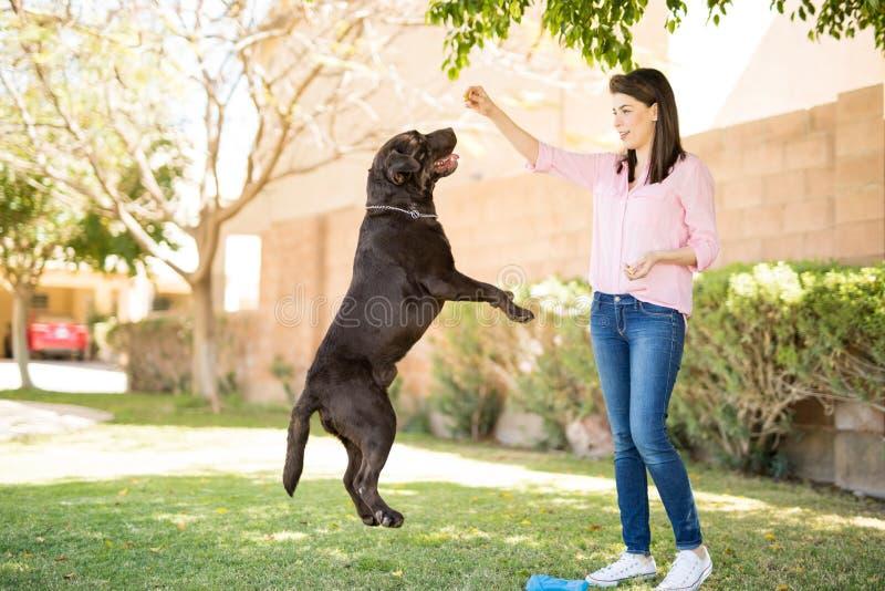 Donna che dà a cane un ossequio fotografia stock libera da diritti